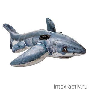 Надувная игрушка Intex 57525NP Белая Акула Great White Shark Ride-On (173х107см)