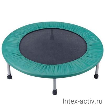 "Батут Sport Elit R-1266 (44"")"