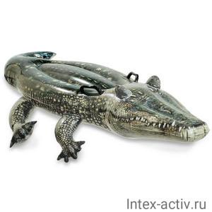 "Надувная игрушка Intex 57551NP ""Аллигатор"" (170х86см)"
