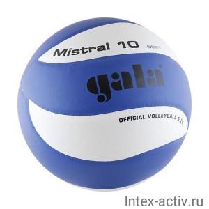 Мяч волейбольный Gala Mistral 10 арт. BV5661S р. 5