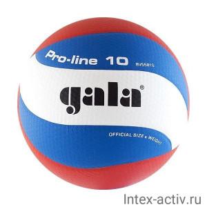 Мяч волейбольный Gala Pro-Line 10 арт. BV5581S р. 5