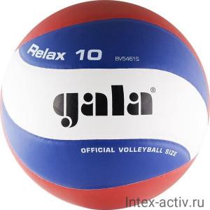 Мяч волейбольный Gala Relax 10 арт. BV5461S р.5