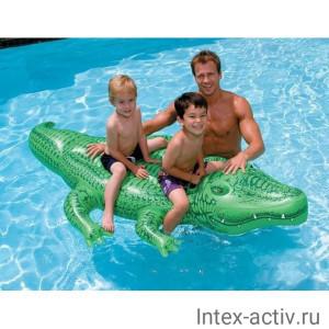 Надувная игрушка для плавания Крокодил Intex 58546 (168х86см) 3+