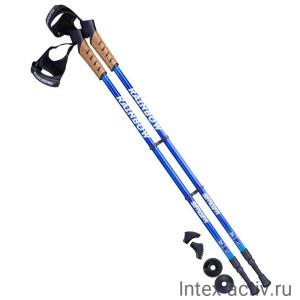 Палки для скандинавской ходьбы Berger Rainbow 77-135 см 2-секционные, синий/голубой