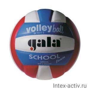 Мяч волейбольный Gala School Foam Colour арт. BV5511S р. 5